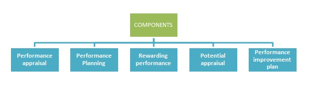 Components-Performance-Management