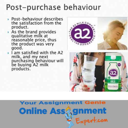consumer behavior assignment answer