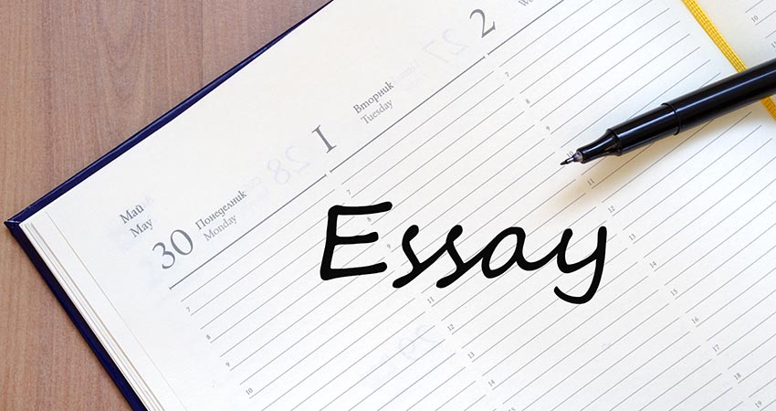 Essay writing service wiki