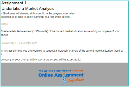 market analysis assignment sample