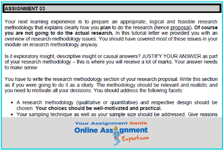 marketing research plan assignment sample