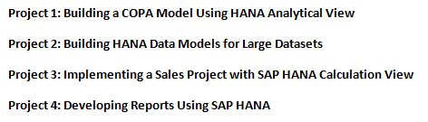 sap hana assignment sample