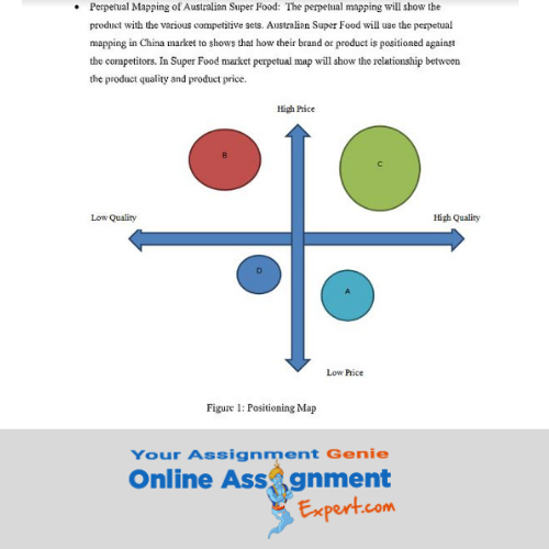 segmentation positioning assessment sample